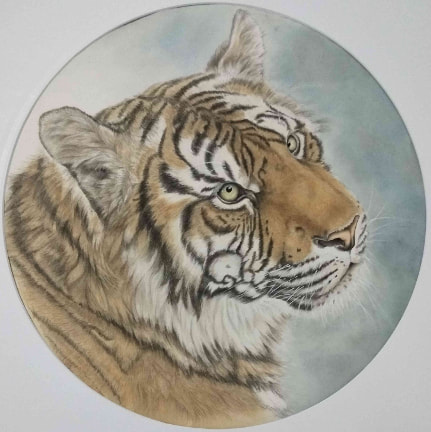 Year Of The Tiger. Unframed Watercolour on Xuan paper, (400mm diameter, circular). The majestic tiger is a symbol of power, luck, and protection. This meticulous work is in the gongbi (Chinese fine art) style.